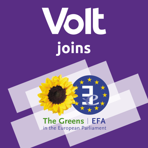 Volt Fraktion Europa Palament