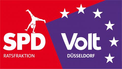 Volt_Fraktion_Duesseldorf