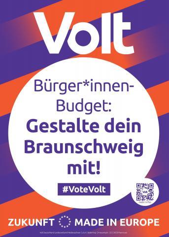 Volt Braunschweig Themenplakat Bürger*innennahe Politik